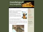 Szkoła Jogi quot;ANANDAquot; - Szczecin - joga, warsztaty, kursy, wykłady
