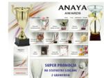 ANAYA AWARDS - trofea sportowe i biznesowe
