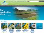 Vente de plantes, arbres, arbustes d'ornement, et matériel pour pépinière - André Briant