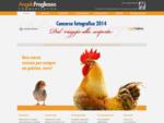 Agenzia Pubblicitaria, Studio di grafica, Web Agency - Pistoia pubblicità e marketing