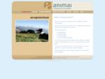 Dierenarts praktijk Animai acupunctuur bij dieren