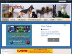 Animali Animalitaly. it il Portale degli Animali, notize e schede sugli animali domestici - Home