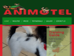 Animal, Pet Day Care | Motel Boarding | Cattery, Kennels, Cats, Dogs | Whangarei, NZ