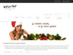 Интернет-магазин нижнего белья «Анна-белл»