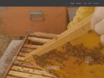 Apicoltura Aloisio produzione miele di agrumi, millefiori e castagno - San Sostene, Catanzaro