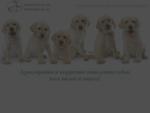 Кинологический клуб quot;Аргус - Москваquot; дрессировка собак в домашних условиях, воспитание ще