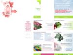 Арис - Упаковка для цветов, подарочная упаковка оптом и в розницу