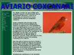 AVIARIO COXCANARI