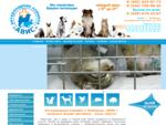 АВИС ветеринарная клиника, ветеринарный врач в Люберцах
