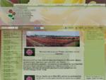 Τριανταφυλλιές του Πάνου Αβράμη
