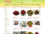 Заказ букетов, цветов, доставка южное, северное Бутово - Москва