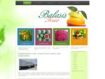 Fruit Import - Export | Fresh Greek Produce Vegetables, Fruits | Watermelon | Oranges | Apples | ...