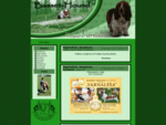 Bassethound 353;un371; veisl279;