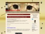 BENGALZUCHT, Bengalkatze, Kitten - Bengalenzucht. ch