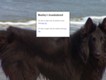 Bentley's Hondenhotel | hondenhotel honden hotel hondenpension hond hotel hondenpension hond pensio