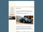 Autonoleggio con autista a Venezia e Treviso - BEST TRAVELS