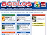 Bodlos Lieboch: Bäder, Badezimmer Installation, Installateur, Werkzeug, Gas, Heizung, Schwimmba