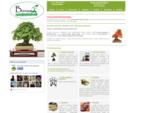 Pestovanie bonsai a bonsai centrum - bonsaj. sk