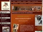 Allevamento boxer del Maschio Angioino allevamento, selezione, cuccioli cani di razza boxer ...