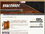 Brocante de meubles anciens, objets d'occasions, et antiquités | Brocanteur Bracobroc 86 Basses