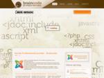 Servizi professionali Joomla - Sviluppo template Joomla - E-commerce Joomla - Braincode. it