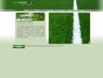 Campi Calcio, costruzione di campi da calcio e campi sportivi in erba sintetica