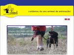 Canis e Gatis | Cartaxo | Caninus - Hotel e Treino para Cães
