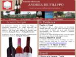 Azienda vitivinicola Andrea De Filippo - San Simone - Sannicola - Lecce - Puglia - Italia