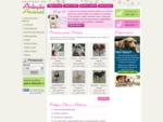 Central de Adoção Animal