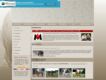 CHEM Centre d039;Hébergement et de protection pour Equidés Maltraités. Association pour chevaux