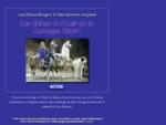les bergers d'asie centrale originels les chiens du pamir de la montagne bleue