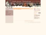 O festivalu Chodské slavnosti - Vavřinecká pouť