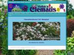 Clematis von A bis Z