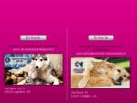 Clinica Veterinaria Legnano - Dott. ssa Roberta Cristani | Pronto soccorso animali domestici | Via