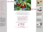 Collage grafisk form reklambyrån med engagemang, lyhördhet och noggrannhet