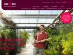 Connex Steuer und Wirtschaftsberatung GmbH