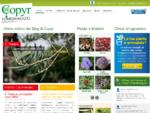 Copyr Giardinaggio - Piante da giardino ed orto, Malattie, Soluzioni