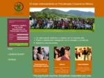 El mejor entrenamiento en Psicoterapia Corporal en México. Certificación Internacional en Psicotera