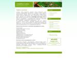 Лицензия для онлайн казино, лицензия Коста Рика для интернет казино, регистрация игорной компании