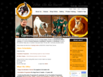 Cowichan Canine Behavior Training Ltd