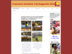 Pagina iniziale - Crescere Insieme Carmagnola Onlus
