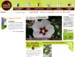 P233;pini232;res Croux trois si232;cles d'exp233;rience dans l'horticulture - Pepiniere ...