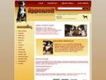Appenzellský salašnický pes ABORA - Hlavní strana