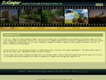 D. ALIMPAR - Limpeza e Construção de Espaços Verdes, Lda