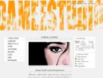 Strony www, logo, animacje flash, identyfikacja wizualna - DameeStudio – grafika komputerowa, .