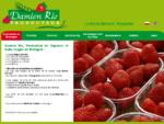 Damien Rio producteur de Légumes et Fruits Rouges en Bretagne à Plougastel et La Roche Bernard