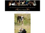 Les animaux de La Dardennerie - Elevage de boxers et de volailles d'ornement - www. dardennerie. fr