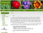 Daugiametės gėlės, augalai