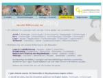 GH Lagerconsulting, Regale & Regalsysteme, Mobilregale, Lagereinrichtungen, Fachbodenregale, Lagerre