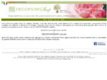 VENDITA ONLINE FIORI ARTIFICIALI DI QUALITA e FIORI REAL TOUCH per composizioni floreali di arredo